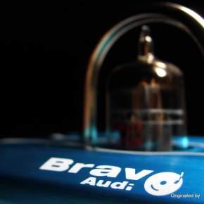 Bravo Audio Ocean : Swim in theocean